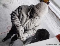 Ледяная барная стойка Сивка Бурка - 2