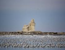 Ледяной маяк на озере Эри фото-4