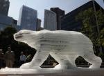 Ледяной медведь в Сиднее