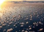 Ледяные цветы в океане фото-1