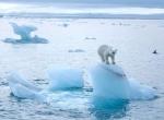 Таяние ледников -4