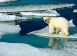 Таяние ледников -2