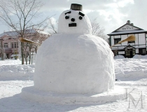 ice-foto-topic-snowmen-6