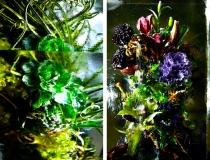 Замороженные цветы от Макото Азума фото-3