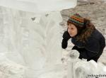 Мастер-класс по ледяным скульптурам - 5