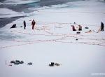 Витрувианский человек на льду фото-4