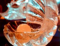 Посуда изо льда фото-3