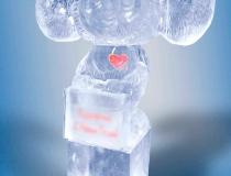 Подарки изо льда фото-3