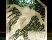 Ледяная стела - Шорт-трек