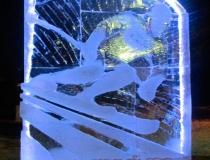 Стела - Горнолыжный спорт с подсветкой