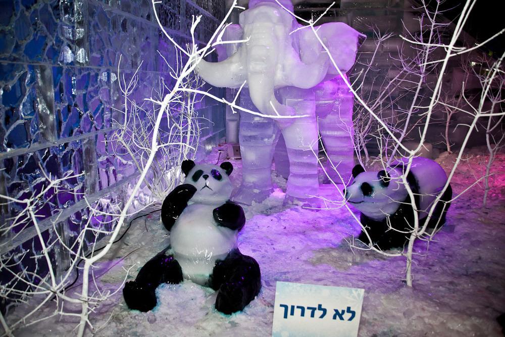 Ледяные фигуры животных на фестивале в Иерусалиме