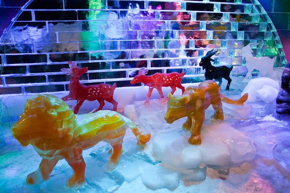 Ледяные скульптуры из цветного льда