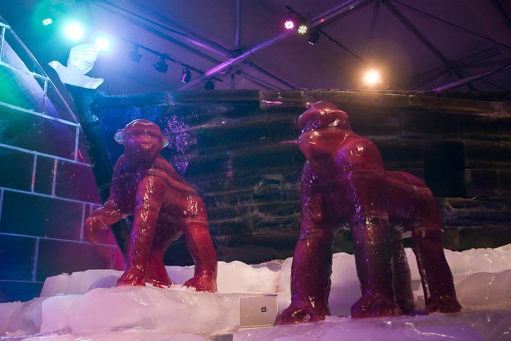 Скульптуры обезьян выполненные изо льда