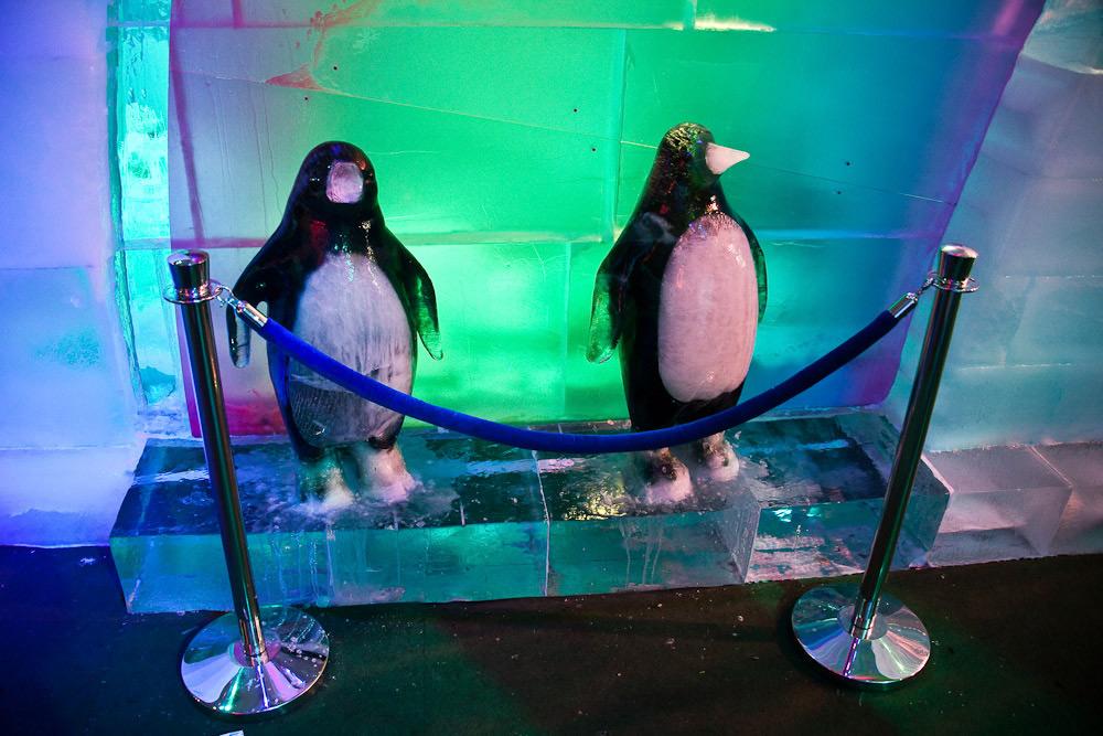 Фигуры пингвинов выполнены из цветного льда