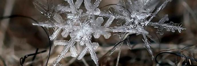 Снежинки - микроледяные скульптуры