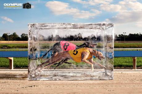 Ледяная глыба для рекламной компании Olympus.