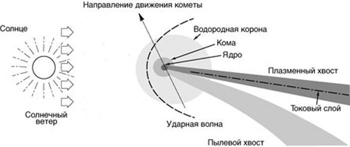 Илл.3 - Схема строения кометы