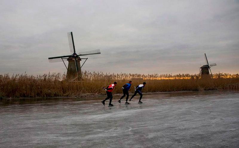 Конькобежцы среди поля ржи