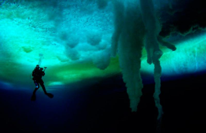 Огромные морские сталактиты