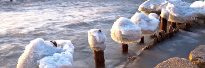 Ледяные грибы
