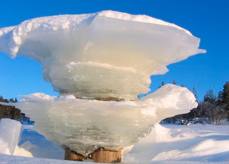 Ледяной гриб