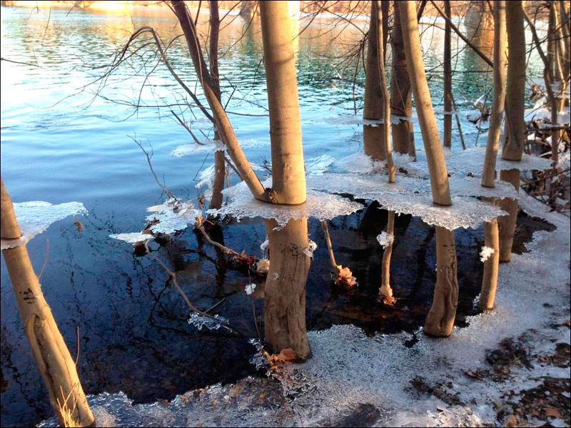 Ледяные навесы