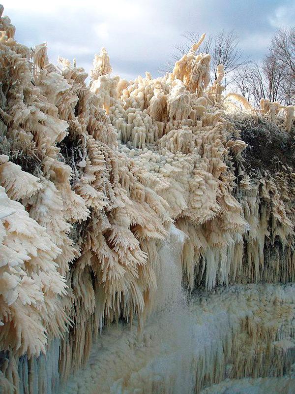 Ледяные лапы