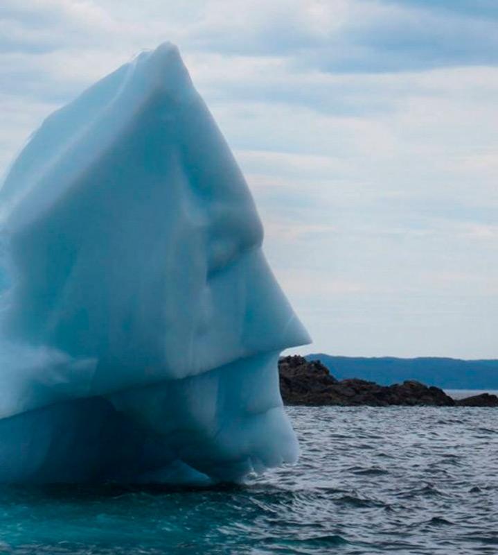 Ледяной портрет