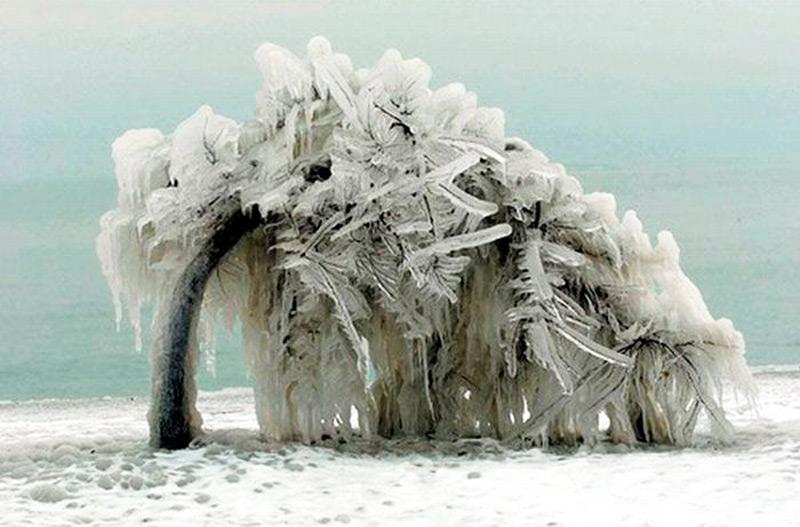 Под тяжестью льда