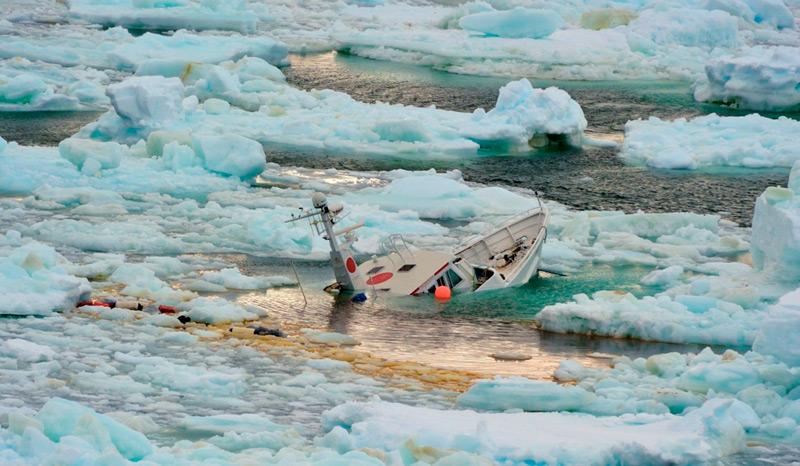 Бухту Ардли заполнило льдом