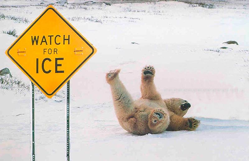 Осторожно, лед!