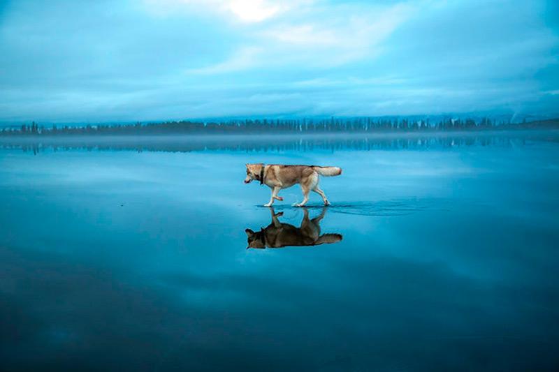 Зеркальная поверхность озера