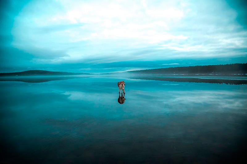 Зеркальная поверхность замерзшего озера