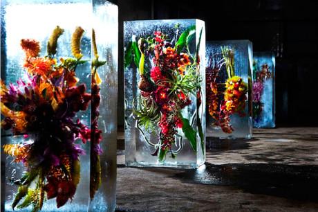 Замороженные цветы от Макото Азума