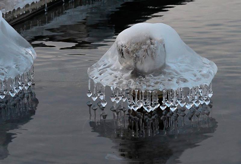Гриб изо льда