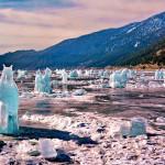 Табун ледяных лошадей на Байкале