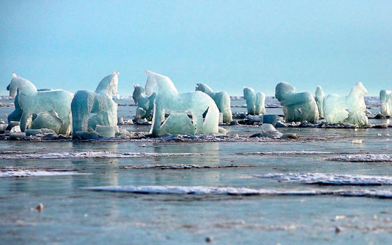 Лошади на льду озера Байкал