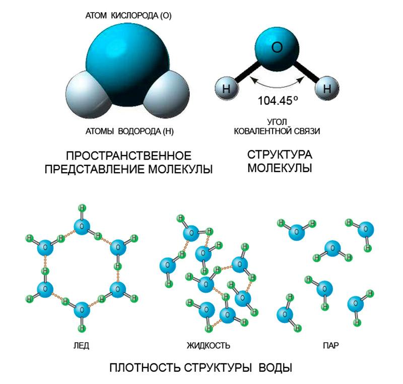 Илл.4 – Молекула воды. Плотность структуры воды в различных агрегатных состояниях