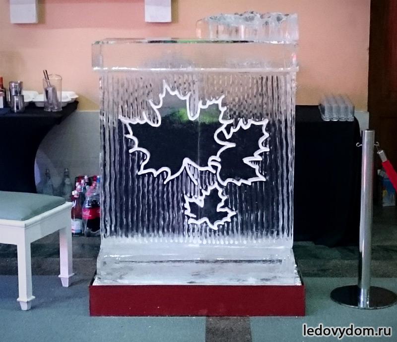 Ледяной бар с кленовыми листьями фото-1