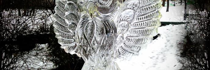 Ледяная сова